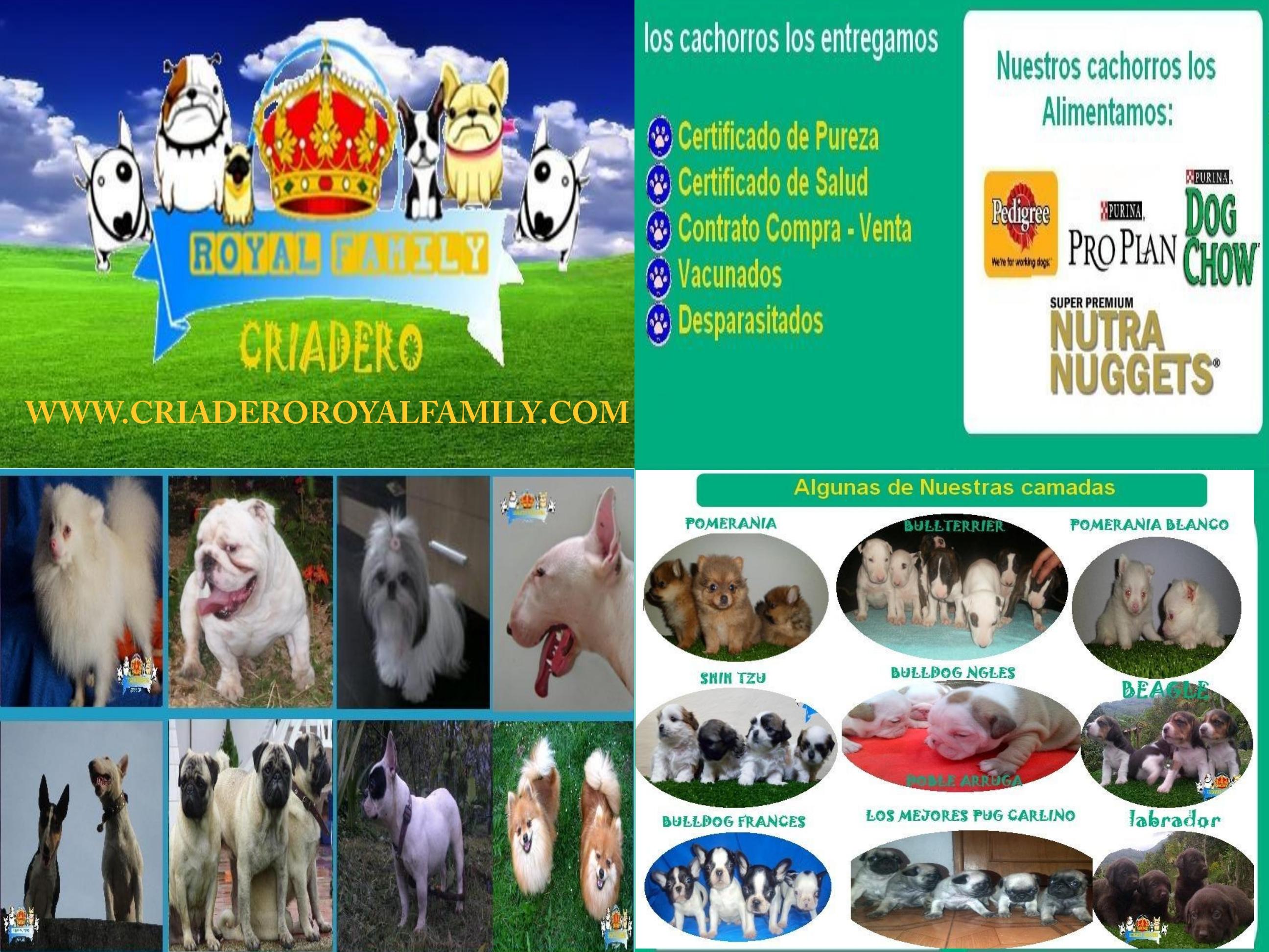 CUADRO (2)